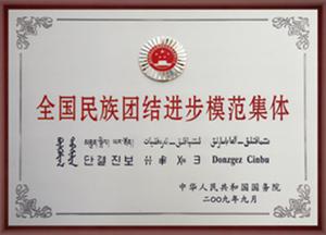 2009年全国民族团结进步集体